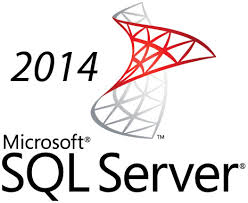 MS SQL Server Standard 2014 Edition CLIENT
