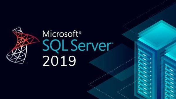 MS SQL Server Standard 2019 Edition OLP NL GOV